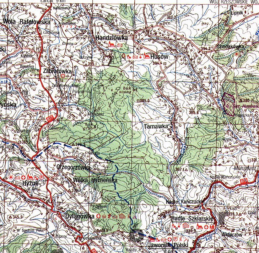 Topographical Map Of Jodłowa - Topographical map